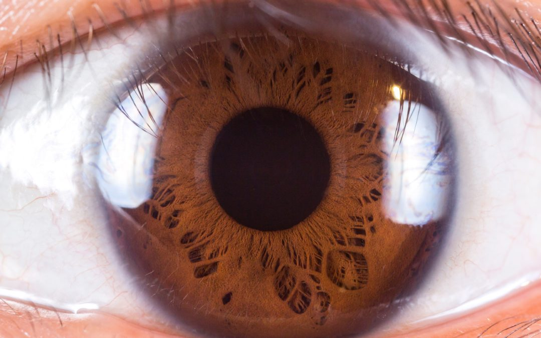 Qu'est-ce que l'iridologie ?