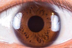 Voici un article dédié à l'iridologie. Vous saurez ce qu'est l'iridologie et les informations que vous pourrez obtenir suite à une consultation en iridologie.